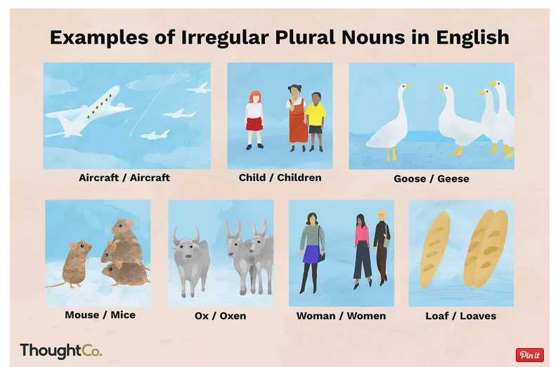 100 Irregular Plural Nouns in English
